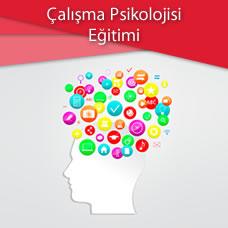 Çalışma Psikolojisi Eğitimi
