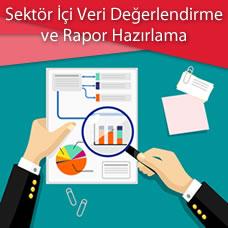 Sektör İçi Veri Değerlendirme ve Rapor Hazırlama Eğitimi